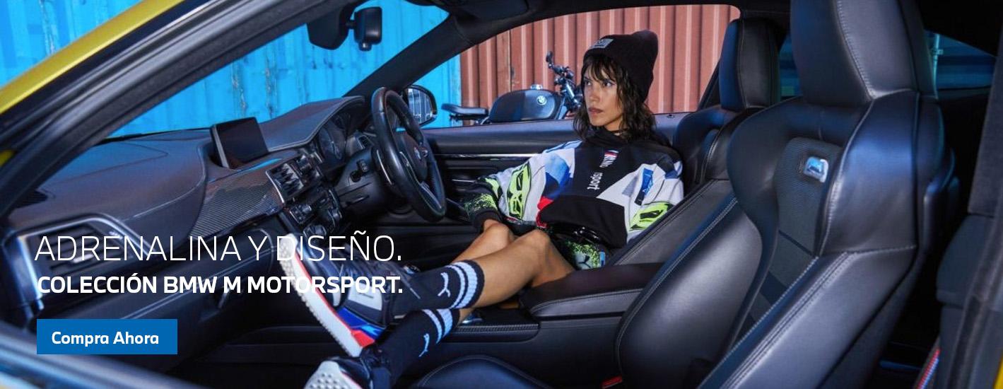 COLECCION BMW M MOTORSPORT